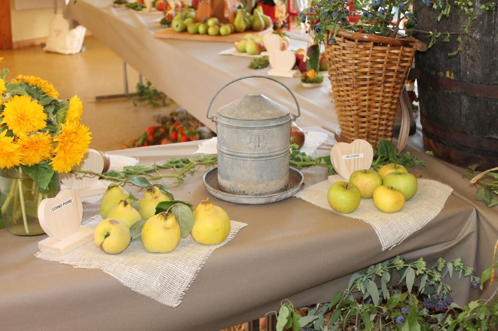 08 expo fruits Cosswiller 2015-09-26